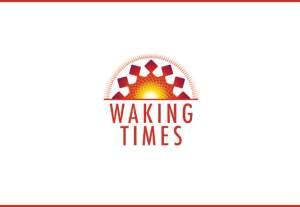 Flickr - Dollar Bill - Mark Turnauckas