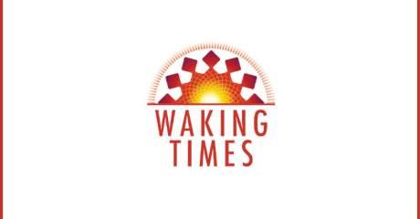 Joker Dollar Bill