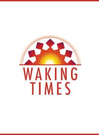 MEME - Tyler Durden