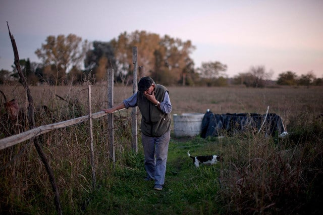 """Felix San Roman walks on his property in Rawson, in Buenos Aires province, Argentina, April 16, 2013. San Roman was beaten by farmers when he complained about clouds of chemicals drifting onto his property. """"This is a small town where nobody confronts anyone, and the authorities look the other way. All I want is for them to follow the existing law, which says you can't do this within 1,500 meters. Nobody follows this. How can you control it?"""" he says. CREDIT: Natacha Pisarenko/AP"""