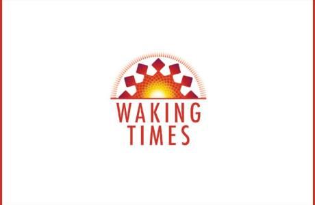 Off-Air Mainstream Media TV