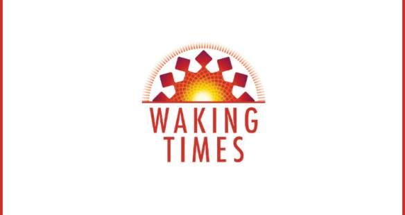 Spiritual Seeker-1