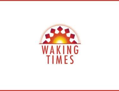terminator-3-rise-of-the-machines-trailer-4