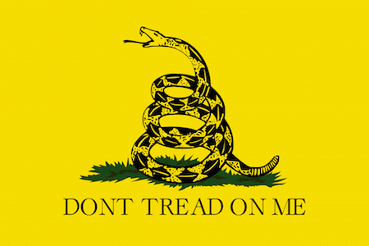 Flag Gadsden