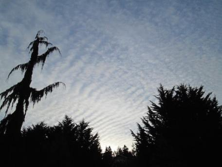The US Navy admits to conducting electromagnetic warfare drills over the Olympic Peninsula. Reader submitted photo.
