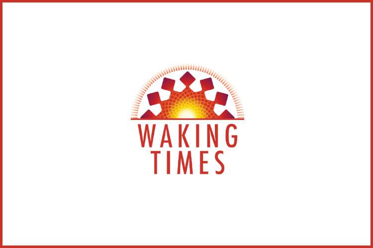 Sunthetic Brain AI Robot
