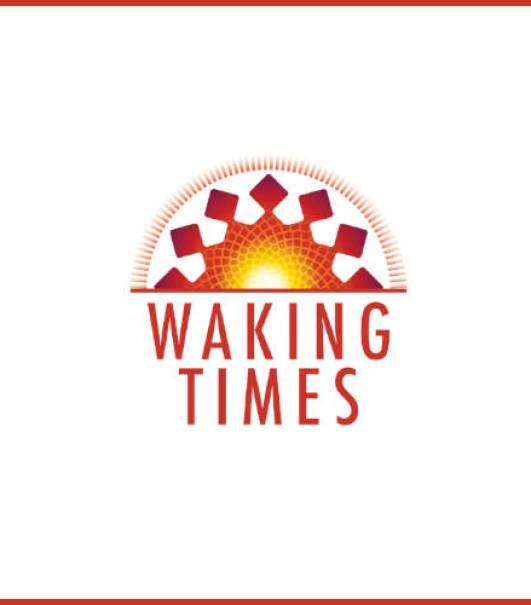 vaccine-Millard-BMJ-quote-1915