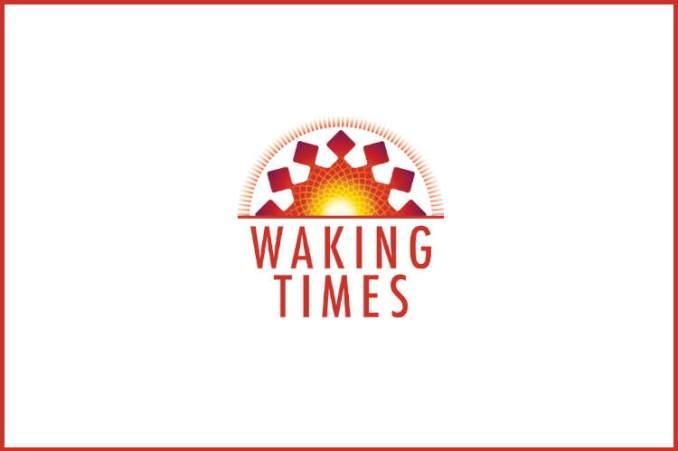 Smart Chip Credit Card
