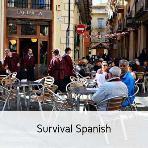 Survival Spanish (2)