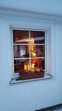 Wohnzimmerfenster Ferienwohnung Wald Kobel