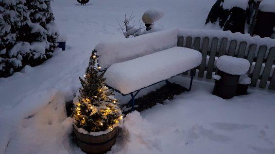 ein winterliches Plätzchen
