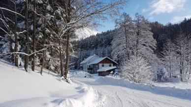 Wald Kobel Hof im Winter