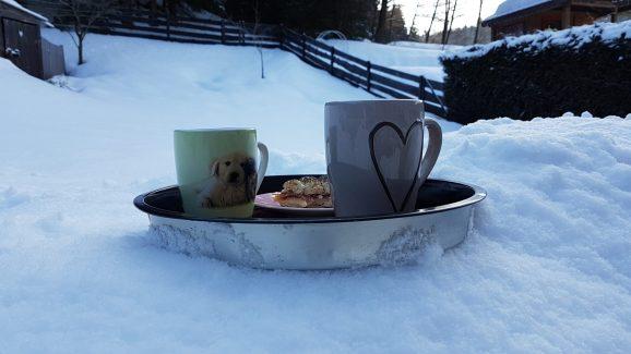 Winterpause im Garten Ferienwohnung Wald Kobel