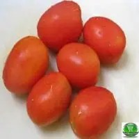 Red Tomato (Net Weight ± 10 gm) 250gm