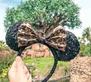 Animal Kingdom tree of life and ear band