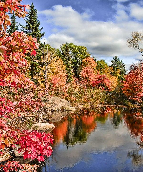 11 Best Places to See Fall Colours in Ontario