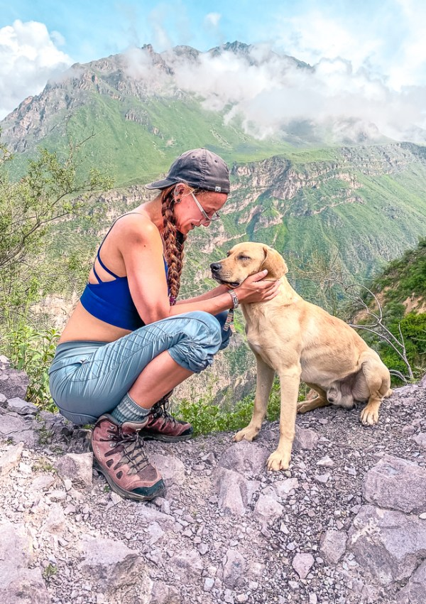 Girl crouching down to pet a street dog with the mountains of colca canyon in the background