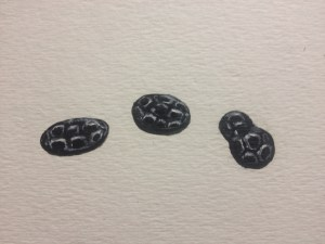 Black jet mourning buttons