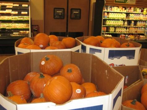 Pumpkin spice 080