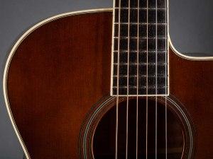 pphoto of Walker guitars Style B Deluxe in detail