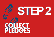 step-2-collect-pledges