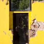 Bramble reaching through crack in the door
