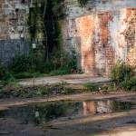 Overgroen ruins of Greenholme Mills