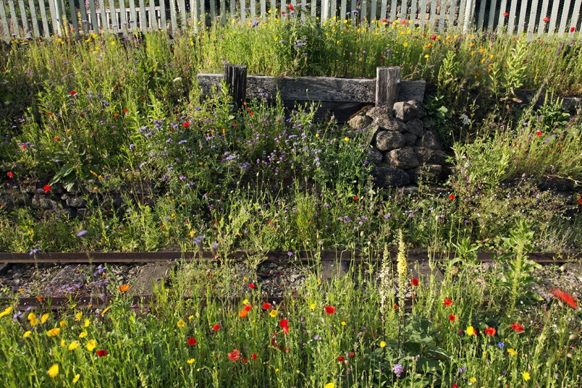 Section of the Railway Garden at Golden Acre Park