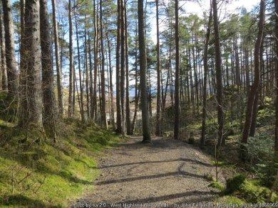 West Highland Way Section 4 - Inverarnan - Tyndrum via Crianlarich
