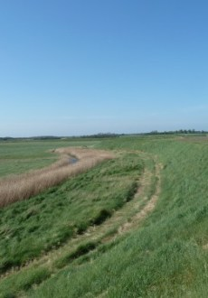 Aldeburgh Marshes and The River Alde May 2011