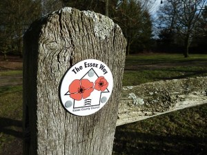 Walks And Walking – Essex Walks – Chipping Ongar Walking Route – The Essex Way