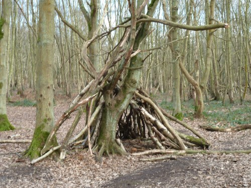 Walks And Walking - Essex Walks - Epping Forest - High Beach - The bivouac capital of the world
