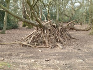 Walks And Walking - Essex Walks Epping Forest Holly Trail Walking Route - Bivouac