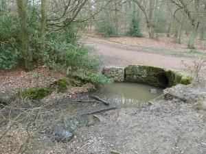 Walks And Walking - Essex Walks Epping Forest Kates CellarWalking Route - Kate's Cellar