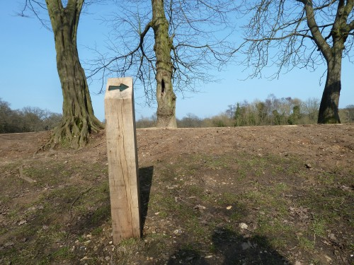 Walks And Walking - Essex Walks Epping Forest Willow Trail Walking Route - The Willow Way Dark Green Waymarkers