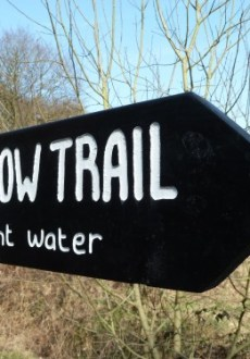 Walks And Walking - Essex Walks Epping Forest Willow Trail Walking Route - The Willow Way Signpost