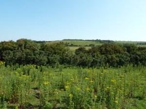 Walks And Walking – Hampshire Walks – Isle of Wight Bembridge Fort Video