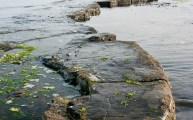 Walks And Walking - Five of the best family walks for summer - Kimmeridge Bay