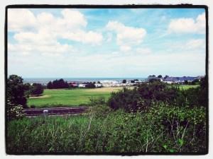 Walks And Walking - Kent Walks Whitstable Coastal Walking Route - Leysdown On Sea