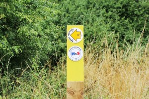 Walks And Walking - Epping Forest Bell Common Walking Route - Essex Ramblers Way Marker