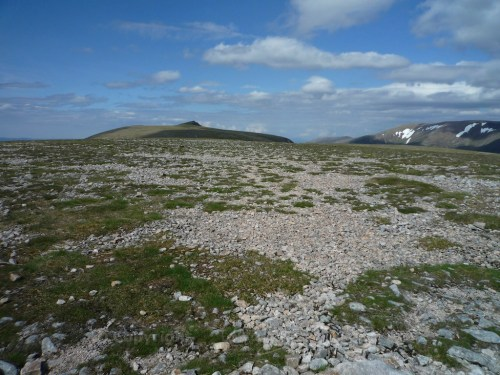 Scotland Walks - A Midsummer Walk Up Carn Ban Mor In The Cairngorms - JWoolf Carn Ban Mor 6