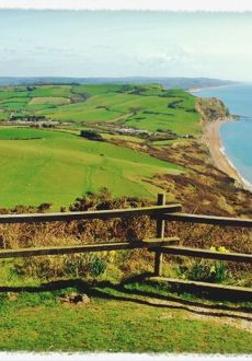 Walks And Walking - Lyme Regis Walking Festival Dorset - Golden Cap