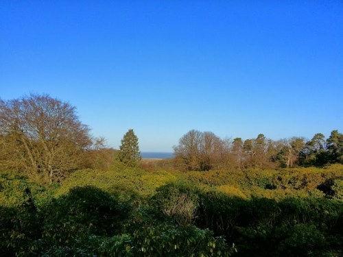 Walks And Walking - Sheringham Park National Trust Walking Route - Viewing Platform