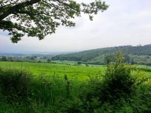 Walks And Walking - Newburn Farm Kington Walking Route - View From Wychmoor Wood