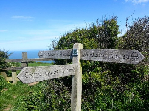 Walks And Walking - Hartland Walk in Devon - Exmansworthy
