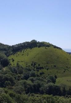 Walks And Walking - Folkestone 3 Peaks Challenge - Sugar Loaf Hill