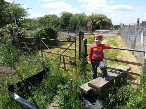 Walks And Walking - Sandwich Walk in Kent - Crossing The Saxon Shore Way