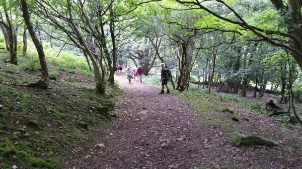 HF Holidays 4 Mile Family Circular Walk In Lynmouth - Valley of Rocks - Woodlands Near Lynton
