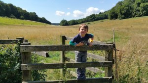 Walks And Walking - Lyminge Forest Walk In Kent - Clavertye Wood
