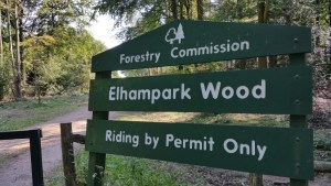 Walks And Walking - Lyminge Forest Walk In Kent - Elhampark Wood